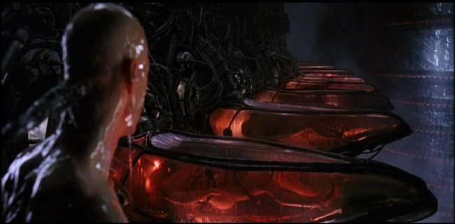 encubadoras matrix
