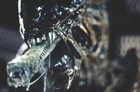 1979_alien_015