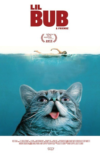 11 – Lil Bub and Friends