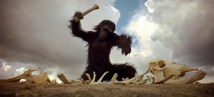 2001 macaco