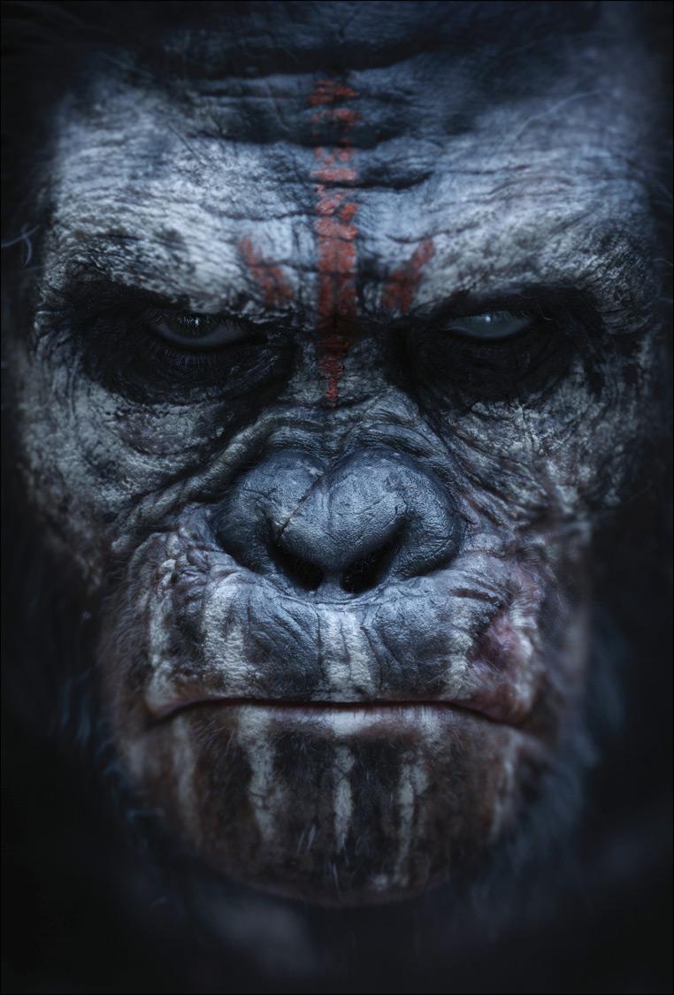 Koba Planeta dos Macacos O Confronto