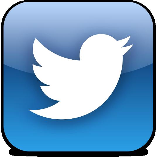 18-icone-twitter