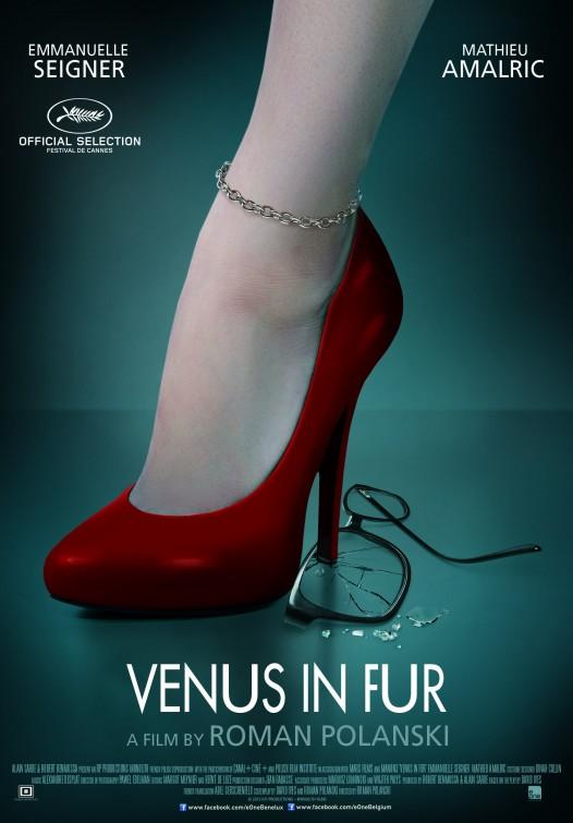 A Pele de Venus Melhores filmes de 2015