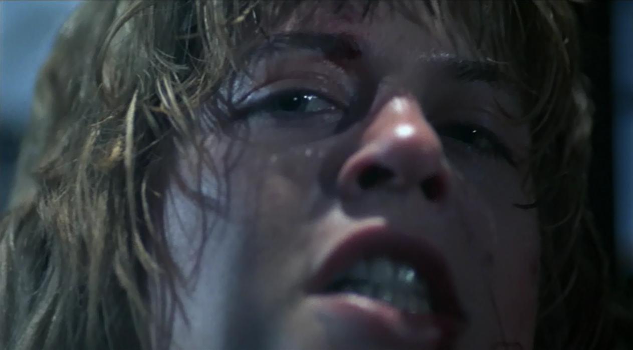 Sarah Connor O Exterminador do Futuro