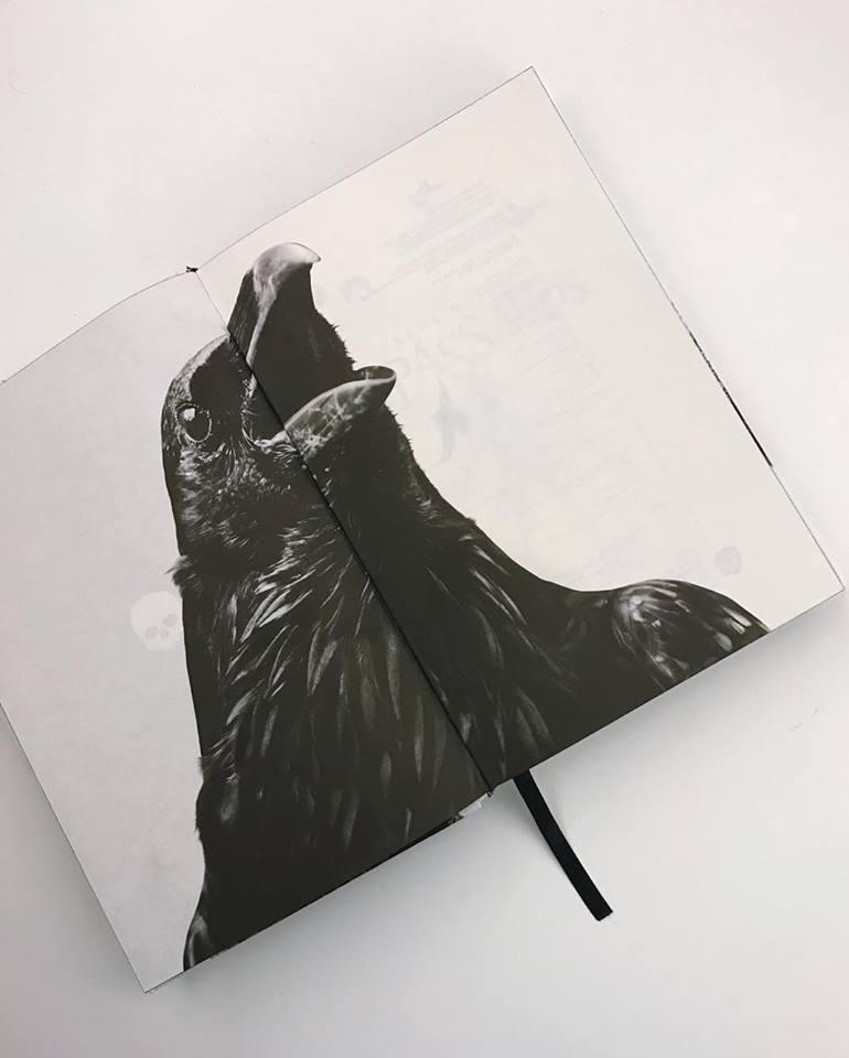 giphy Resenha: Os Pássaros - Frank Baker